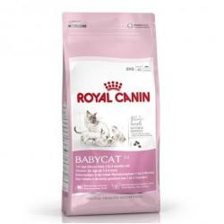 Royal Canin Yavru kedi maması BabyCat Kuru 2 Kg